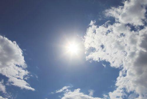 Bild: AP Digital - In The Heat - 150g Vlies