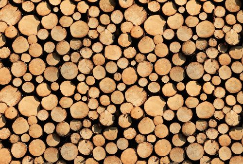Bild: AP Digital - Stock Of Wood - 150g Vlies (2 x 1.33 m)