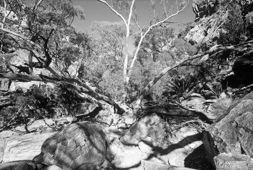 Bild: AP Digital - Rock Island - SK Folie (4 x 2.7 m)
