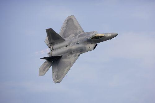 Bild: AP XXL2 - F22 Raptor - SK Folie (3 x 2.5 m)