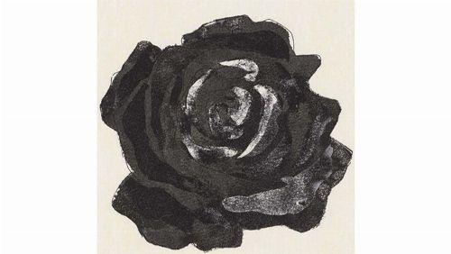 Bild: DM212-2 Rose 90*90