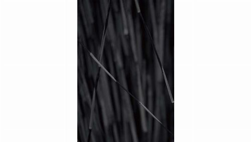 Bild: DM318-2 Bamboo 180*265