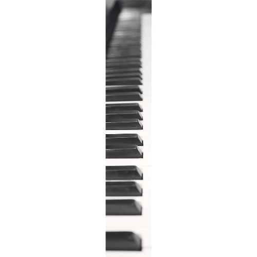 Bild: Accent - ACE67189114 - Duplex Panel: Klavier