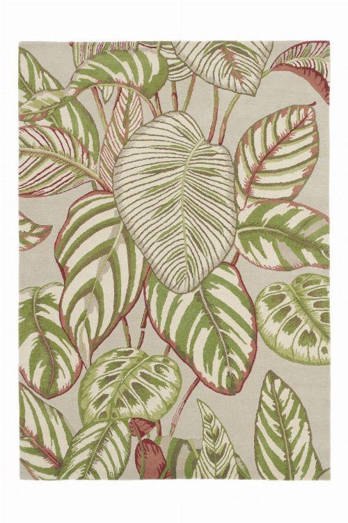 Bild: Sanderson Teppich Calathea 50807 - Olive