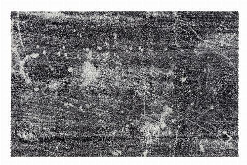Bild: ASTRA Schmutzfangmatte - Lavandou Vintage (185 x 120 cm)