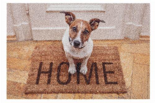 Bild: ASTRA Schmutzfangmatte - Deco Print Hund Home