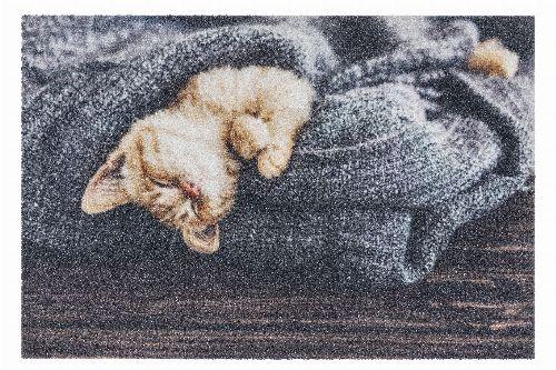 Bild: ASTRA Schmutzfangmatte -Deco Print Katze Decke