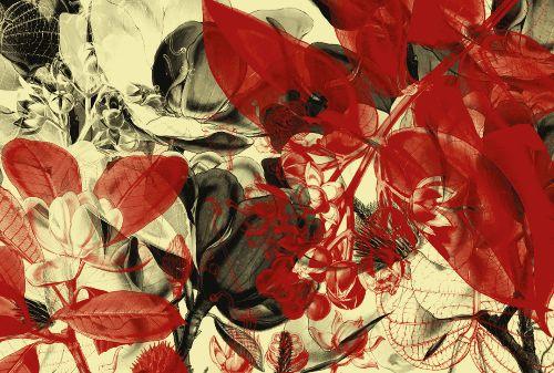 Bild: AP Digital - Botanical Garden - 150g Vlies (2 x 1.33 m)