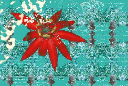 Bild: AP Digital - Floral Red - 150g Vlies