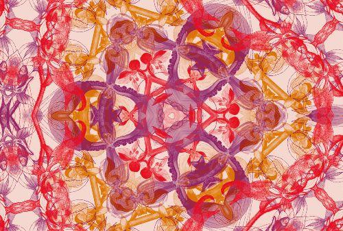 Bild: AP Digital - Blossom Pentacle - 150g Vlies (5 x 3.33 m)