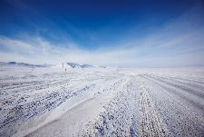 Bild: AP Digital - Ice Road - 150g Vlies (2 x 1.33 m)