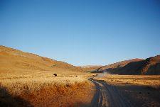 Bild: AP Digital - Grassland - 150g Vlies (4 x 2.67 m)