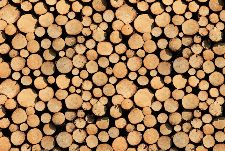 Bild: AP Digital - Stock Of Wood - 150g Vlies (3 x 2.5 m)