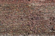 Bild: AP Digital - Ziegel 1 - 150g Vlies (2 x 1.33 m)