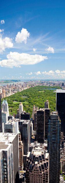 Bild: AP Panel - Central Park
