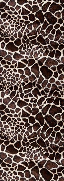 Bild: AP Panel - Skin giraffe