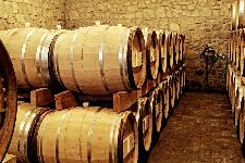 Bild: AP XXL2 - Wine Cellar - 150g Vlies (2 x 1.33 m)