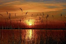 Bild: AP XXL2 - Sunset At The Lake - 150g Vlies (2 x 1.33 m)