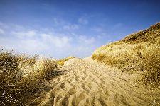 Bild: AP XXL2 - Sylt Beach - 150g Vlies (5 x 3.33 m)