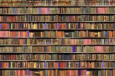 Bild: AP XXL2 - Bookcase - 150g Vlies (3 x 2.5 m)