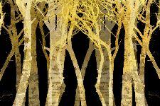 Bild: AP XXL2 - Stylized Trees - 150g Vlies (2 x 1.33 m)