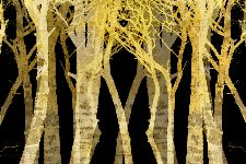 Bild: AP XXL2 - Stylized Trees - 150g Vlies