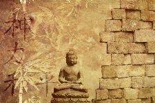 Bild: AP XXL2 - Buddha IM - 150g Vlies (2 x 1.33 m)