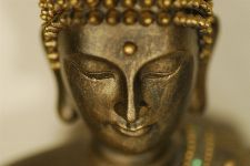 Bild: AP XXL2 - Buddhain Portrait - 150g Vlies (2 x 1.33 m)
