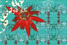 Bild: AP Digital - Floral Red - SK Folie (2 x 1.33 m)