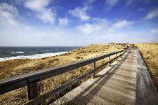 Bild: AP XXL2 - Sylt Runway - SK Folie (2 x 1.33 m)