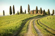 Bild: AP XXL2 - Toscana Summer - SK Folie (4 x 2.67 m)