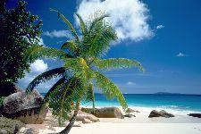 Bild: AP XXL2 - Beach - SK Folie (3 x 2.5 m)