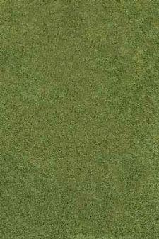 Bild: Hochflor Teppich Shaggy (Grün)