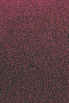 Bild: Designer Schlingenteppich Twinset Uni Loop (Bordeaux; 140 x 200 cm)