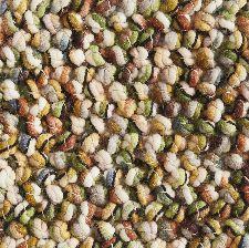 Bild: Brink&Campman Teppich Marble (Grün; 200 x 250 cm)