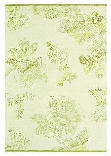 Bild: Schurwollteppich Tonquin (Creme; 250 x 350 cm)