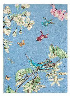 Bild: Wedgwood Designer Teppich Hummingbird (200 x 280 cm)