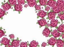 Bild: P0103018 Rose garden 360*265