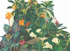 Bild: P0314018 Jungle Lounge 360*265