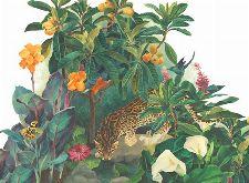 Bild: P0314028 Jungle Lounge 360*265