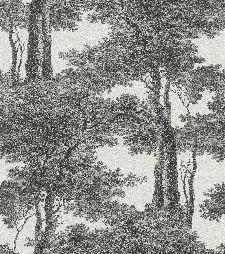 Bild: Passepartout Vliestapete 605419 - Blätterwald (Schwarz/Weiß)