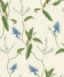 Bild: Passepartout Vliestapete 605730 - Prärielilie (Blau)