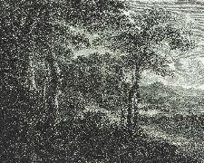 Bild: Passepartout Wandbild 606881 - Blätterwald