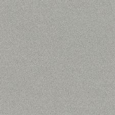 Bild: Passepartout Vliestapete Uni - 607253 (Grau)