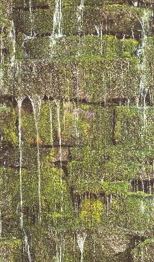 Bild: Barbara Becker Roots Wasserfall Tapete - b.b. VI 861303 by Rasch (Grün)