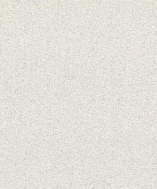 Bild: Rasch Textil Tapete Abaca 229423 - Uni (Hellbeige)