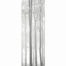 Bild: LEGENDS - Wandbild LGD63547000: Wald