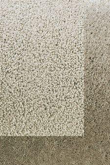 Bild: Schlingenteppich mit Frisee Bordüre Twinset Frame (Beige; 140 x 200 cm)