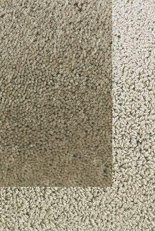 Bild: Frisee Teppich mit Schlingenbordüre Twinset Skyline - Beige