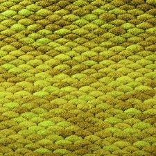 Bild: Teppich Pinto - Curry